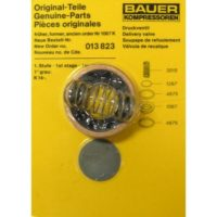 Bauer Discharge Valve Kit 013823