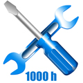 1000 h
